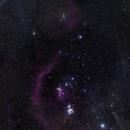 Barnard's Loop,                                Enkhbat N.