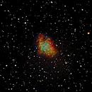 M1 Crab Nebula,                                Manuel