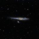 NGC 4631 Whale Galaxy,                                Roger Menard