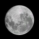 Blue Moon,                                Samuel Müller