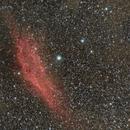 NGC 1499 - California Nebula,                                GALASSIA 60