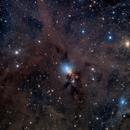 NGC 1333 Deep Sky West,                                Craig Prost