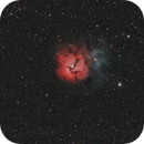 M20 Trifid Nebula,                                msmothers