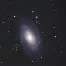 Bodes Galaxie M81,                                Detlef Möller