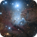 NGC 2264 - Fox Fur Nebula and friends,                                Dhaval Brahmbhatt