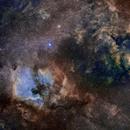 North America Nebula and Sadr Region in SHO,                                Andrew_B