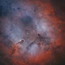 IC 1396 Elephant's Trunk Nebula in HOO,                                Douglas J Struble