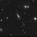 NGC 3190,                                Chris Lasley
