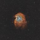 NGC 2174 Monkey Head Nebula,                                Elmiko
