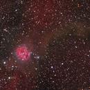 Cocoon Nebula,                                sydney
