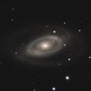 NGC 1350,                                Gary Imm