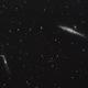 NGC 4631 - Whale Galaxy,                                Stephan