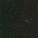 Seagull nebula,                                Paolo Manicardi