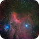 IC 5070 - The Pelican Nebula,                                Insight Observatory