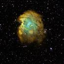 NGC 2175 NB Monkey Head Nebula,                                dts350z
