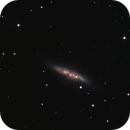 M 82 mit Supernova 2014J,                                alphaastro (Rüdiger)