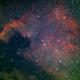 North America Nebula (NGC 7000),                                Brian Preston