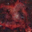 LBN 654 The Heart Nebula,                                Richard Coggins