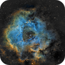 The Rosette Nebula,                                Michel Makhlouta