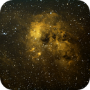 NGC1893,                                Daniele Viarani
