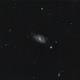 M 109 - Barred Spiral Galaxy in Ursa Major,                                gigiastro