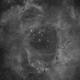 NGC 2237 Rosetta Nebula + Open Cluster NGC 2244   Ha,                                Thomas Westphal