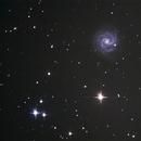 NGC 3184 - (Constellation de la Grande Ourse),                                Astroluc63