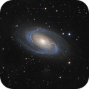 Messier 81 (Bode's Nebula) in Ursa Major,                                Steve Milne