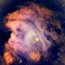 NGC 2175 on a modified sunset palette.,                                Claudio Tenreiro
