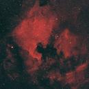NGC7000 Mosaic,                                jamesastro