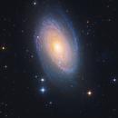 M81, Bode's Galaxy,                                Firas Haki
