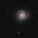M74,                                Bart Delsaert