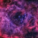 Rosette Nebula,                                MQuinn
