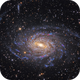 NGC 6744 – Low Surface Brightness Galaxy in Pavo Constellation,                                Terry Robison