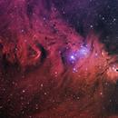 NGC2264 The Cone Nebula & Friends,                                Tim Jardine