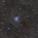 NGC 7023 - Nébuleuse de l'Iris,                                Alain L'ECOLIER