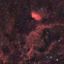 Tulip Nebula widearea,                                Dick Newell
