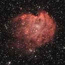 NGC2174 Monkey Head Nebula,                                Philippe Brunasso