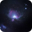 M42 Orion Nebula,                                Peter