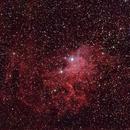 Flaming star nebula,                                pterodattilo
