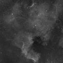 NGC 7000 monochrome,                                Dan Kordella