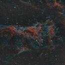 Pickering's Nebula - SHO w RGB Stars,                                Elvie1
