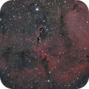 IC 1396, Elephant's Trunk Nebula,                                Michael Timm