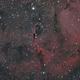 IC 1396, Elephant's Trunk Nebula,                                Michael Timm