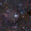 NGC 7129 from Cepheus,                                Rafael Schmall