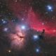 Horsehead Nebula - QHY268C First Light,                                Jarrett Trezzo