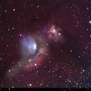 M 78 Nebula,                                Richard Willits