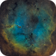 IC 1396: Elephant Trunk in a Northern Rosette,                                Glenn Diekmann