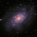 NGC 2403,                                Timothy Martin & Nic Patridge