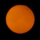 Sun 29-04-18 (HA),                                Fritz